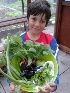 George on the allotment
