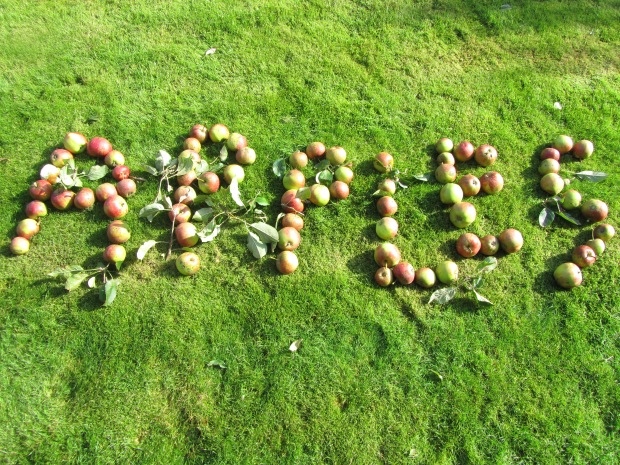 Apples spelt with apples pic