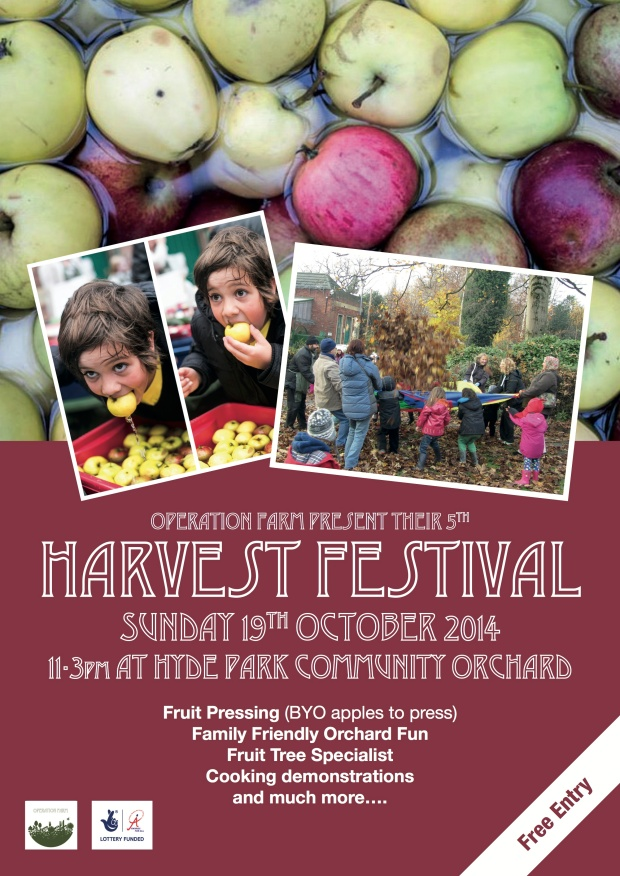 Scarecrow and Harvest Festival 2014 - back