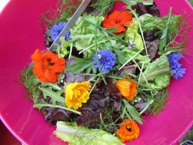 8_CLF picnic Flowery Salad