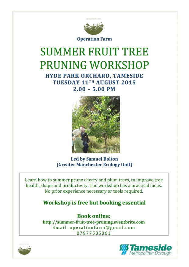 Op Farm Summer Fruit Tree Pruning flyer