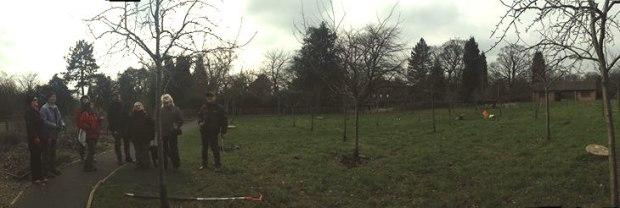 Community Orchard 2