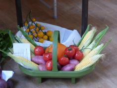 mossley-horticultural-show-5